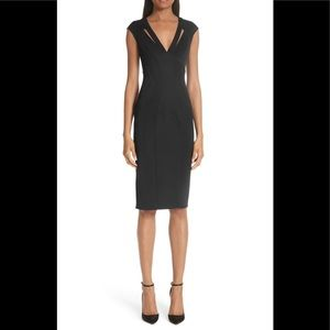Zac zac Posen poni body con sheath dress